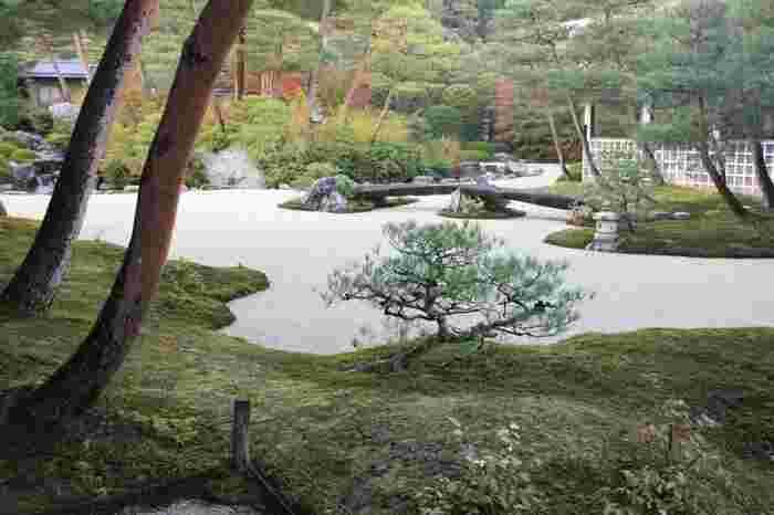京都の雅を感じさせる、苔のゆるやかな曲線が描く「苔庭」。