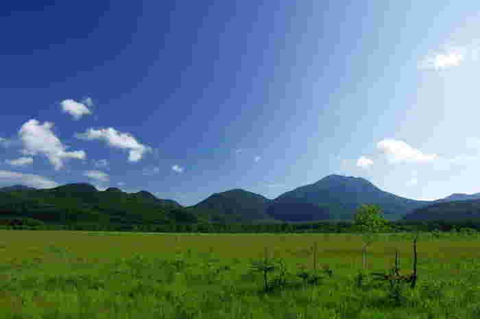 """""""涼""""を求めて夏の大人旅。首都圏の避暑地「栃木県・奥日光」を訪れてみませんか?"""