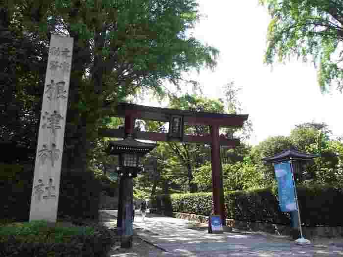 千代田線の千駄木駅から徒歩5分、東京大学のすぐそばにある「根津神社」は、今から1900年以上も前からある由緒ある神社で、災難除けや縁結び、願望成就のご利益があることでも有名です。緑豊かでとても心地よくお散歩にぴったり。