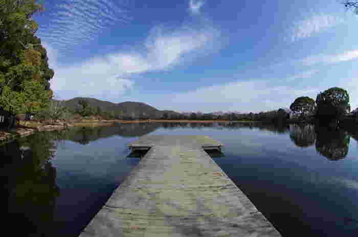 【大覚寺の「大沢池」は、嵯峨天皇が離宮を造営した際に、唐の「洞庭湖」を模して造られたと伝わる日本最古の庭園の一つです。池泉舟遊式庭園として造られ、平安期には貴族らが舟を浮かべ、満月を鑑賞し、舟遊しました。画像の手前は、観月台。】