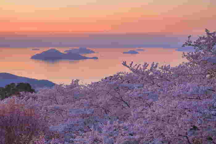 浦島太郎が玉手箱を開けたときに出てきた白煙が紫色の雲になって山に棚引いたことから名付けられたと言われている「紫雲出山」。天気がいい日には標高352mの山頂展望台から中国地方や小豆島まで広大なパノラマが見渡せます。