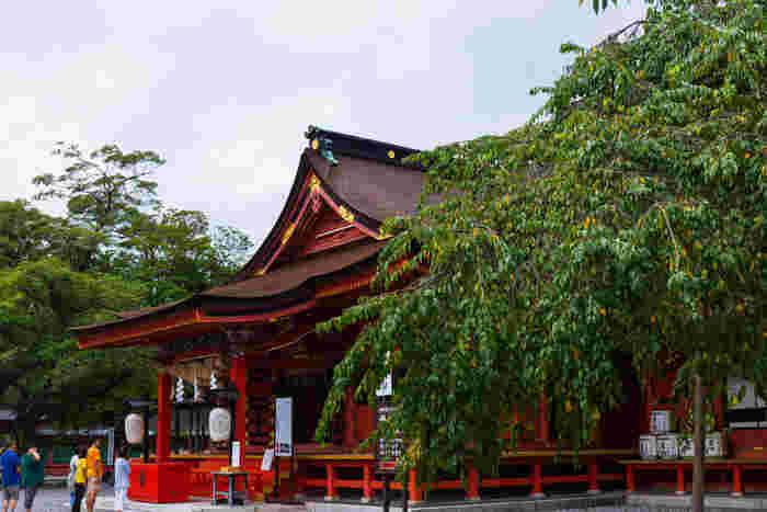 過去には、源頼朝、武田信玄、徳川家康など多くの権力者が大切にしてきた場所でもあります。きっと歴史に名を遺した武将たちも、ここで富士山のパワーを感じていたのかもしれませんね。