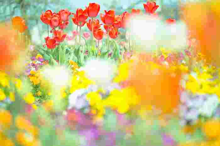 永遠の美しさをまとう…。この春注目の「リアル生花アクセサリー」