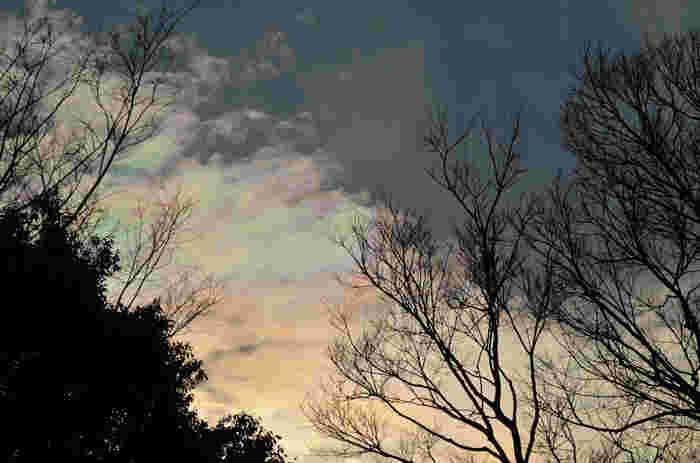 一説では、彩雲や一直線の虹「環水平アーク」は地震の前兆?という噂があるようです。