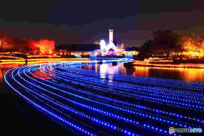中央池に現れる「光の大河」。静かな池の水面に、幅5メートル長さ約120メートルの煌めく青い河が現れる様は幻想的で、訪れる人を魅了してやみません。