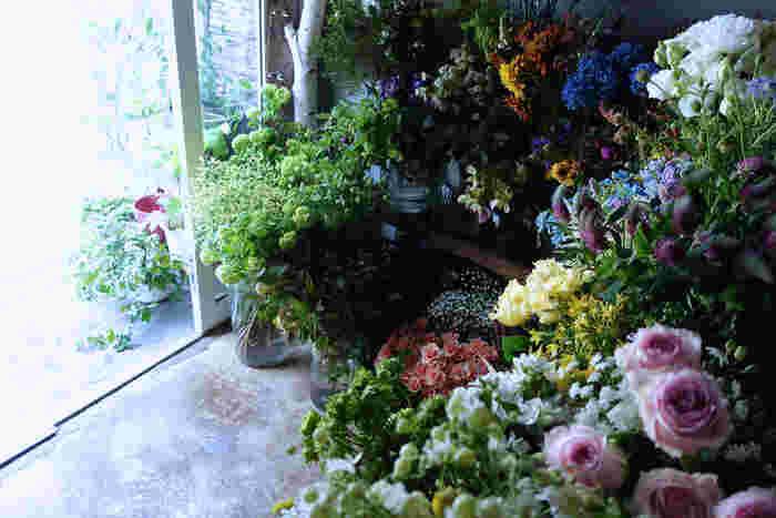 中目黒駅から線路沿いに歩くこと5分。小さな看板と店先に並んだグリーンたちが、あたたかく出迎えてくれます。 小さいながらもたくさんの花にあふれたex.の店内。 知っている花も、知らない花も、どれも美しくわくわくするものばかり。