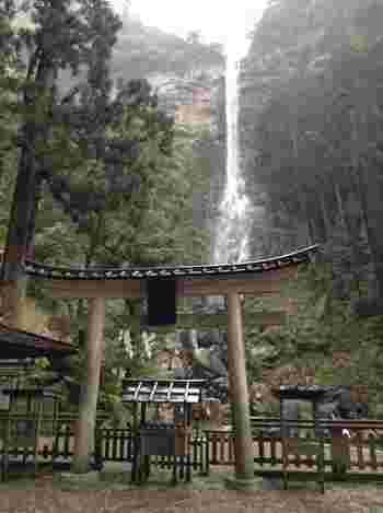 滝のすぐそばにある熊野那智大社別宮飛瀧神社では、滝そのものを神として祀っています。
