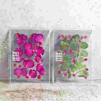 渋谷PARCOの「COMINGSOON」。オンラインストアにて、フードを軸に幅広い分野のアイテムの販売がスタートしました。中でも注目は、「CATERING ROCKET」による、ハーブティーブランド「Have a Herbal Harvest」です。