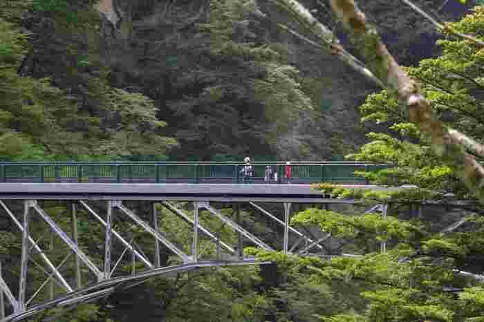 飛龍橋は、川底からの高さ100メートルのアーチ橋です。かつてはトコッロが通っていた飛龍橋は、寸又峡を代表する橋の一つです。