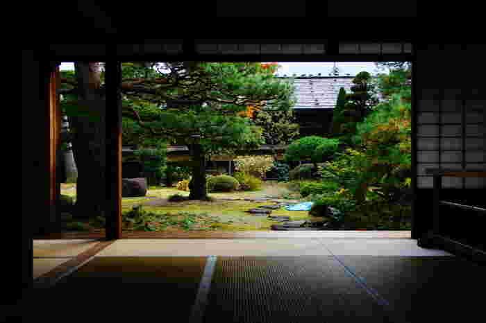 座敷から眺める日本庭園の美しさは格別です。よく手入れされた庭園も、建物、座敷と同様に江戸時代の姿をそのまま復元されており、まるで大名屋敷を訪れたような気分を楽しむことができます。