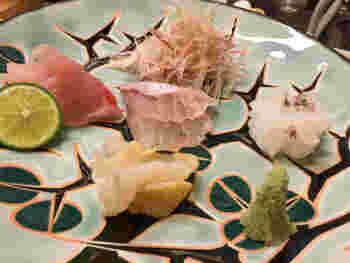 彩りが華やかなお寿司は目にも美味しそう。お寿司はもちろん、お造りもオススメです。