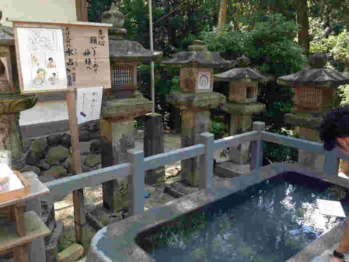 ここでは、池に浮かべて運勢を占う「水占い」が人気です。