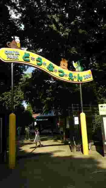広大な緑に包まれた大宮公園内にあり、散歩のついでに立ち寄れる動物園です。