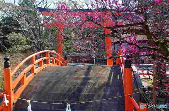 玉依姫命と賀茂建角身命を主祭神として祀る下鴨神社は、京都市内でも有数の古い歴史を持つ神社で、ユネスコの世界遺産に登録されています。