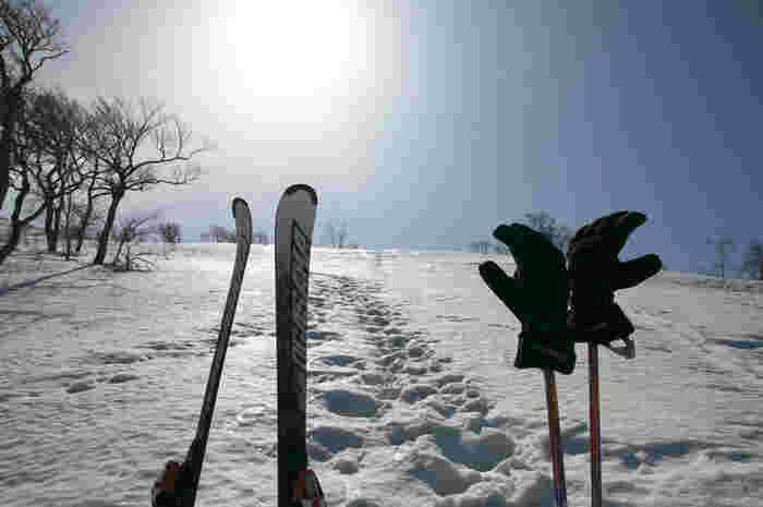 北海道から東北、信越、北関東…日本には、春スキーOKのゲレンデがいっぱい。スキーリゾートでスキー・グルメ・ホテルライフなどをたっぷりと楽しむのもおすすめですし、またアクセス便利なスキー場に気軽な日帰りで行くのもいいですね。今回は、春スキーにおすすめのゲレンデと地元グルメをご紹介します。