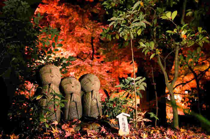 四季折々の景色を楽しめる鎌倉ですが、紅葉を見ることのできる時間はとても短いもの。のんびり紅葉散策しながら、お抹茶をいただいてひと休みする♪この時期ならではのお散歩を楽しんでみてはいかがでしょうか。