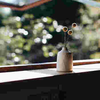 お花のある暮らし初心者さんにおすすめしたいのが、白のシンプルな花瓶です。どんなお花ともよく馴染み、インテリアにもそっと華を添えます。同じ白でも、素材やデザインで印象が違うので、いくつか集めてみても楽しいかもしれませんね。