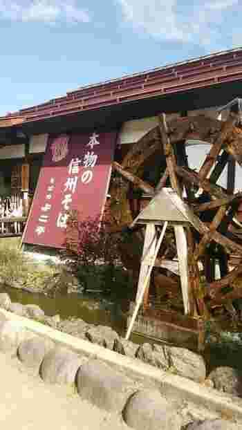 長野県上水内郡(かみみのちぐん)にある「そば処 よこ亭」は、志賀高原を望む山々や田園風景も楽しめる、水車のあるそば処。風味豊かなコシのあるそばの名店として親しまれています。