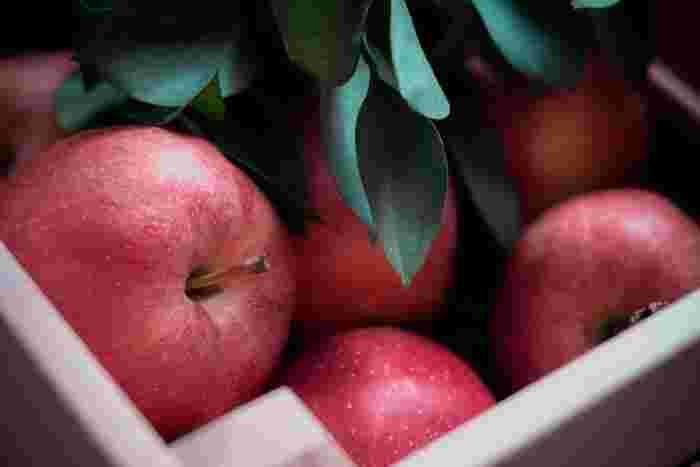 りんごに含まれるミネラルやカリウム、食物繊維は、消化を促したり体内の粘膜を保護する働きがあるといわれているので、風邪で弱った胃腸に効果的です。水分を多く含んでいるので、水分補給としてもおすすめ。さらに、クエン酸やリンゴ酸で疲労回復にも効果も期待できます。