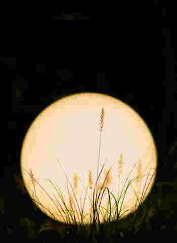 お月見は2つある!「十五夜」ともう一つの「十三夜」の豆知識&献立集