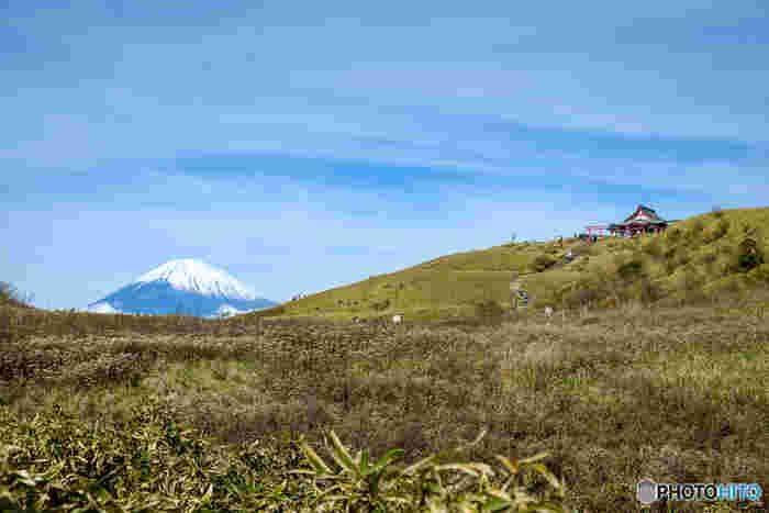 秋はすすき野原が広がっていて風情があります。そして富士山がくっきりと見える山頂には箱根元宮(はこねもとつみや)が。古代から山岳信仰の霊場であった駒ケ岳山頂にある箱根元宮は、麓にある箱根神社の奥宮になります。奈良時代初期に創建された歴史ある箱根神社は、パワースポットとしても人気の高い場所です。