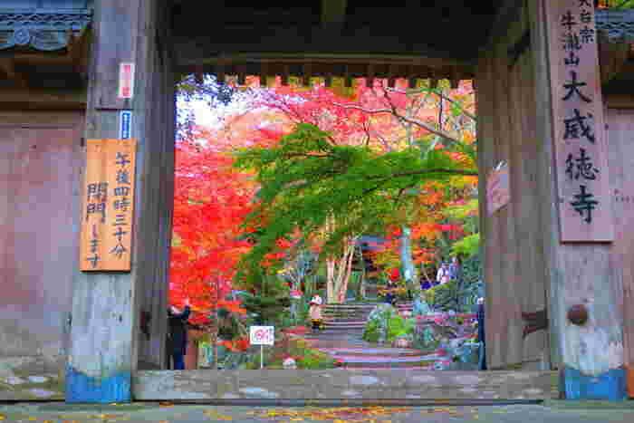 大威徳寺(だいいとくじ)は、紅葉の名所として名高い大阪府岸和田市の牛滝山の山間部に建立する天台宗の寺院です。