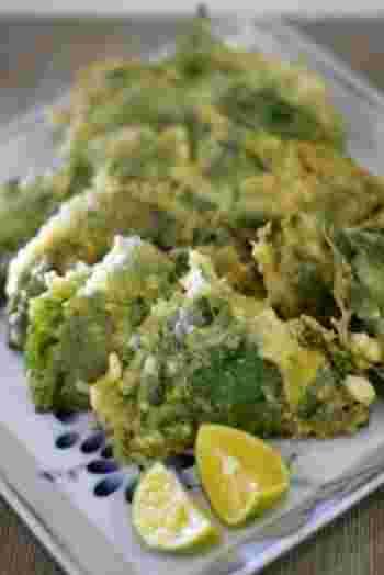 カツオのたたきが余ってしまった時のリメイクアイデアレシピです。エゴマの葉は栄養もたっぷりですが、なければ大葉で代用も。揚げたてのサクッとした食感も美味しいです。