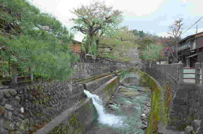 江戸時代から明治時代初期にかけて築かれた古い日本家屋が軒を連ねている飛騨高山の美しい景観は、「飛騨の小京都」とも形容され、「日本の原風景を残す街」として紹介されています。その素晴らしい景観を一目見るために、飛騨高山では日本国内外から訪れた大勢の観光客で賑わっています。