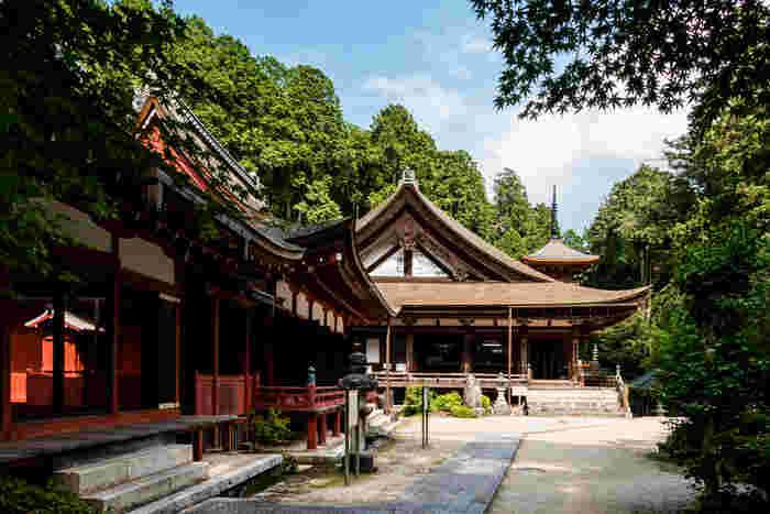 標高333メートルの長命山の中腹に位置する長命寺は、聖徳太子によって619年に開基された寺院です。その名の通り、「長命」のご利益があると伝わる長命寺は、年間を通して大勢の参拝者で賑わっています。