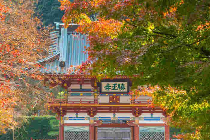 大阪府箕面市の山間部にある勝尾寺は、727年に開基された真言宗の寺院です。古くから勝運祈願、勝運ダルマの寺として親しまれており、年間を通じて大勢の参拝者で賑わっています。