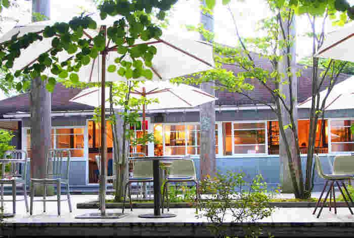 那須街道沿いに、見落としてしまいそうな程小さな看板と共に、広がるNASU SHOZO CAFE。那須の超人気カフェでありながら、雰囲気はいつも『こうありたい那須』の象徴ともいえる落ち着いたおしゃれな空間。高原の緑とその木漏れ日が美しいお店。