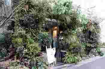 表参道にあるグリーンを楽しめるカフェ。入り口からまるでジブリのような世界です。