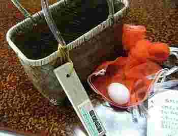野沢温泉には自分で温泉たまごを作れる場所が幾つかあります。なかなか本物の温泉で温泉卵を作る機会というのはないと思うので、ぜひ作ってみましょう。卵は温泉街の土産店や商店で購入できます。