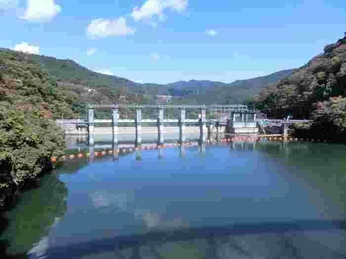 水面に映えるダムもちょっぴり幻想的。