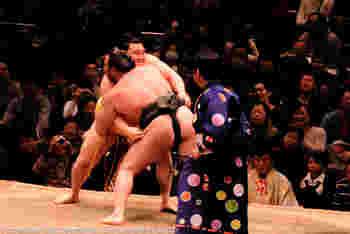 """たくましい力士""""おすもうさん""""のぶつかり合いに、""""相撲女子""""でなくとも興奮しちゃいそうですね。 本場所以外の時は貸し出しも行われ、プロレスなど格闘技イベントや、学生相撲選手権大会なども開催されています。"""
