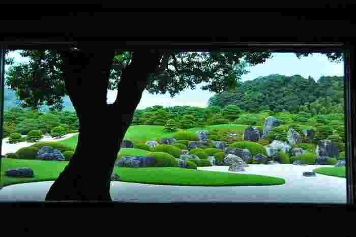 """窓枠が""""庭""""という名作品の""""額縁""""の役割を果たし、眺めれば、それは一幅の絵画そのものです。"""