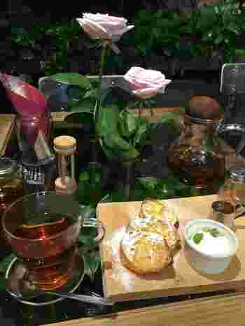 植物のある空間でのティータイムはこころも落ち着き、ゆっくりとした時間を過ごすことができます。そんな緑を楽しめるオススメのカフェをご紹介します。