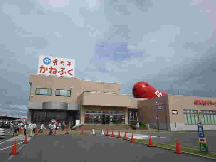老舗の明太子店として知られているかねふく明太子のテーマパーク「めんたいパーク」は、できたて明太子の試食やお土産の販売。そして、子連れでOKの無料工場見学を受け付けているので、大洗水族館と併せて行きたい周辺観光スポットの1つです。