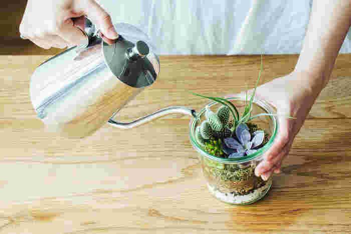 テラリウムも植物なので、お手入れは必要です。水やりは、植えてから1週間後からはじめます。植物に直接かからないように、隙間から土にめがけて、ゆっくりと水を注ぎます。  そのあとは、2~3週間に一度の目安で水やりをします。 (土がしっかり乾燥してから。多肉植物にシワがよってからでもOKです) 環境によって違うので、ご自分の家にあったペースで水やりを行ってくださいね。
