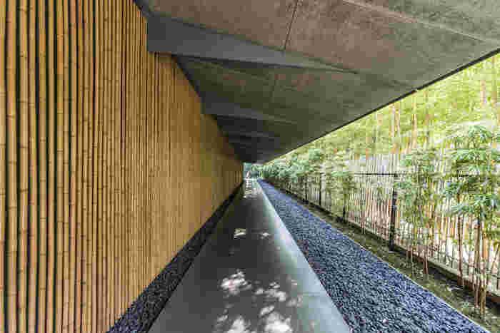 美術館自体も周りの自然と調和するように建てられ、一際こちらの回廊が美しくフォトスポットになっていますよ。リニューアルした新館の設計を手がけたのは、2020年東京オリンピック時の新国立競技場のデザイナーにも決定した隈研吾さん。