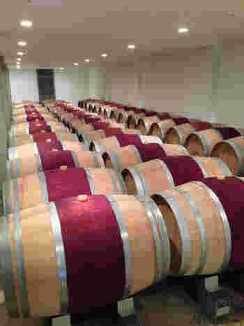 こちらは、ワイン樽の貯蔵庫の様子。