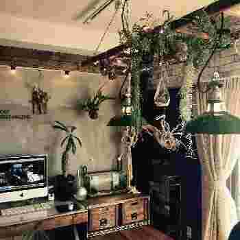 下へ伸びていくタイプの植物は天井などから吊るすと、空間に変化が生まれお部屋がぐっとおしゃれな印象に。細い葉の植物は日光や照明に照らされて、レースのような美しさを作ってくれます。