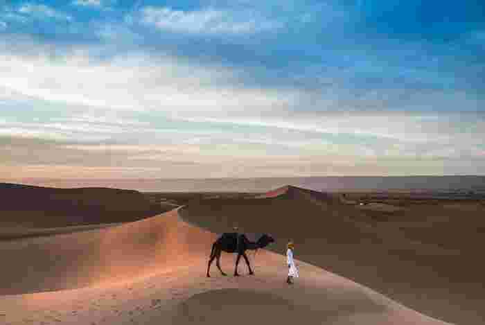とにかく、ロビンの強さとたくましさに惚れ惚れします。わたしがロビンと同じ24歳のときに、こんな冒険が出来ただろうか。映像に出てくる、広大な砂漠に自然の美しさと神々しさを感じます。旅の中で出会う人々と交流し、一生の宝物になるような経験を積んでいくロビン。これが実話だということが本当に衝撃です。エンドロールに流れてくる、実際の写真に心を打たれます。「今の自分じゃだめだ」と感じている人には、響くものがある映画だと思います。