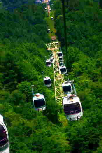夏は、高山植物の宝庫としても知られる「八方尾根自然研究路」。ここへ行くにはまず、ゴンドラとリフトを乗り継ぎ八方池山荘へ。