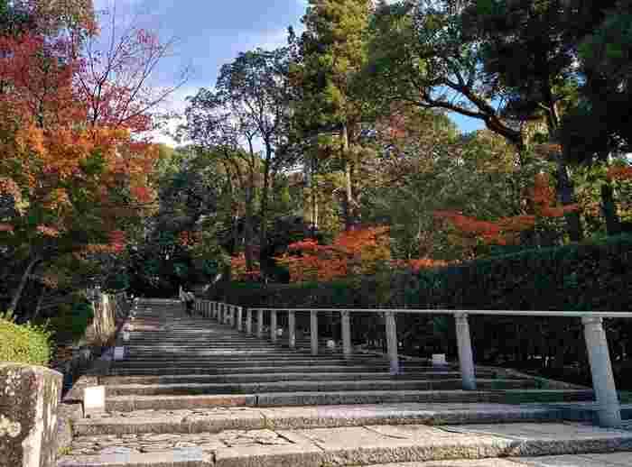 三門から、中段の伽藍へと誘うのが、「知恩院」の有名な二つの坂。勾配が急な「男坂」と緩やかな「女坂」です。 【11中旬の「女坂」】