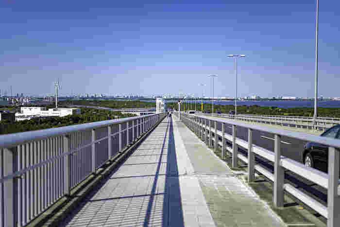 海面から橋まで高さがあり、海の真ん中を歩いているような開放感が楽しめます。遠くには東京スカイツリーやお台場の観覧車も見えますよ。