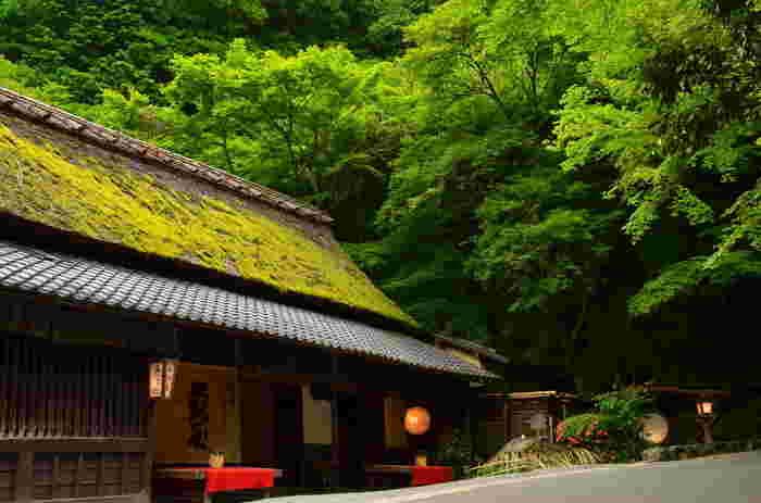 【六丁峠を過ぎて坂を下りきると、鳥居本に到着。画像は、鳥居本の鮎料理の老舗「鮎司・平野屋。】