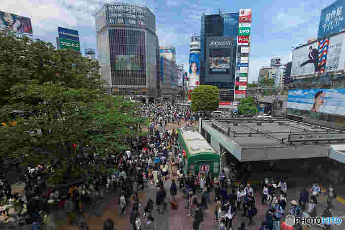 毎日たくさんの人でにぎわう刺激的な街「渋谷」。定番の待ち合わせスポットやテレビでよく見る交差点、おしゃれな商業施設など、エネルギッシュな東京を体感したい人にぴったりのエリアです。原宿は徒歩圏内、六本木や新宿も近いエリアにあるので、合わせて観光するのもありですよ。