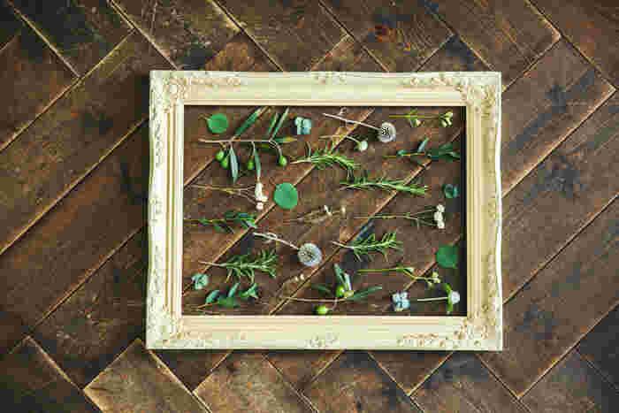 誰もが小さい時に慣れ親しんだ草花は、可憐で控えめな魅力に溢れています。鮮やかで一瞬で目を引くようなものは少ないですが、だからこそ、気取らない優しい印象に。そんな親しみやすいハーバリウムのレシピです。