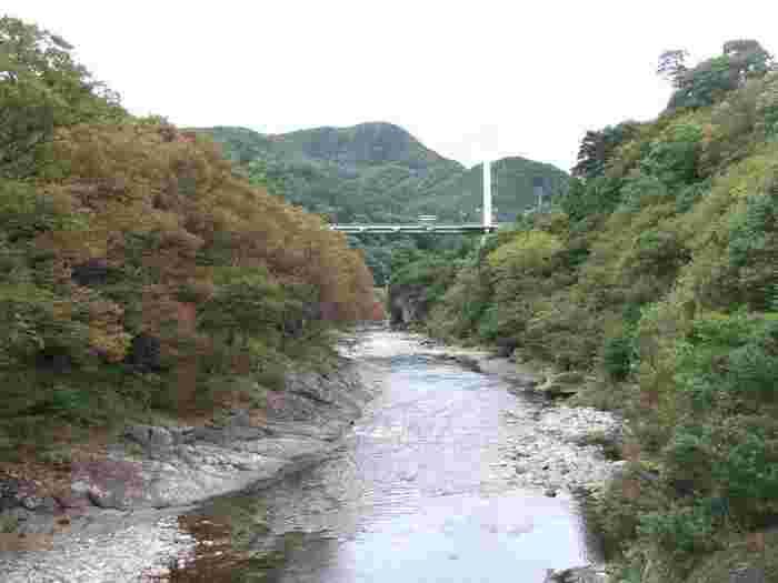 20mの岩壁に架かる長さ32mの吊り橋・笹笛橋から眺める色づいた谷川岳と利根川両岸の紅葉は絶景と言われています。